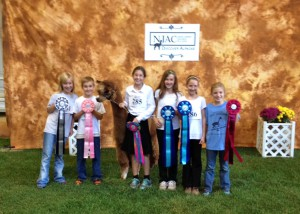 Ribbon winners in the NJAC Performance competition. From Left: Grace, Aiden, Natalie, Mary, Sarah, Naomi.