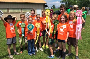 Little Lost Creek Alpacateers display their well-earned ribbons.
